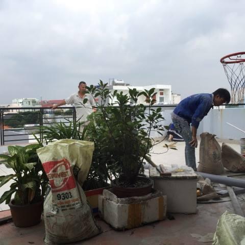 Sơn sửa chữa nhà ở tại Quận Gò Vấp